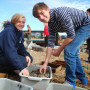 Mariculture-Program-Western-Suffolk-BOCES_10 21 14_0012